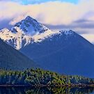 Juneau, Alaska by Deri Dority