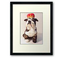 King Bulldog Framed Print