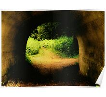 Tunnel To Enchanted Woods.. Poster