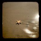I wished upon a star... by Barbara Gordon