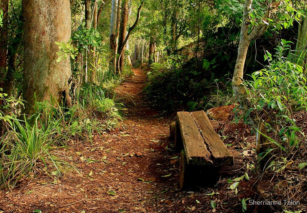 Rainforest Rest by Sherrianne Talon
