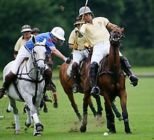 Ham Polo Club by Mark Greenwood