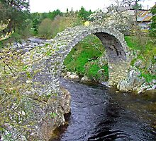 Carrbridge II by Tom Gomez