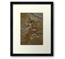 Prehistoric Angel Framed Print
