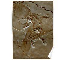 Prehistoric Angel Poster