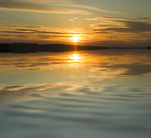 Sunset Ripple by Shannon Beauford