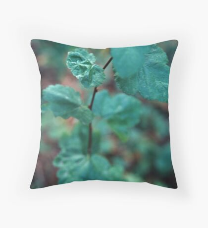 Steps Towards The Light Throw Pillow