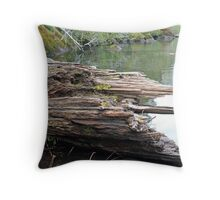 """Lake Driftwood"" Throw Pillow"