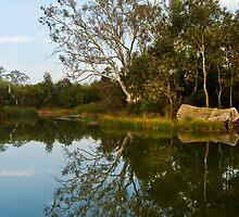 Mount Barker Wet Lands by Craig Hender