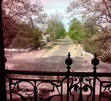 Fading Back  --  Colonial Williamsburg,VA by Lam Tran