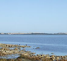 The Coorong by bushdrover