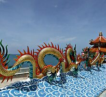 Chinese Dragon by Dave Lloyd