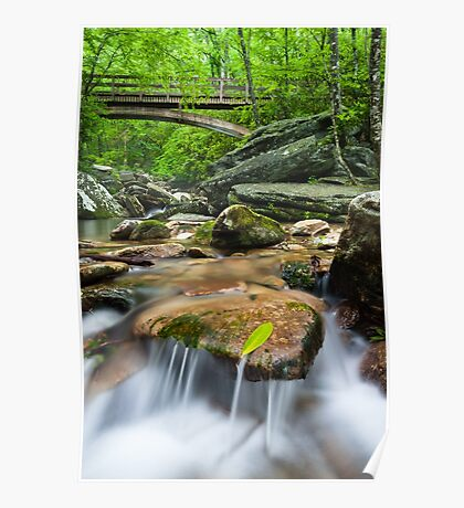 North Carolina Mountain Waters - Boone Fork & The Tanawha Trail Poster