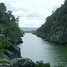 Launceston From the Cateract Gorge by wiccanrider