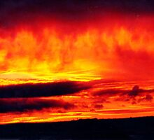 Sky on fire by Roz McQuillan