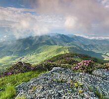 Roan Highlands Southern Appalachian Scenic by MarkVanDyke