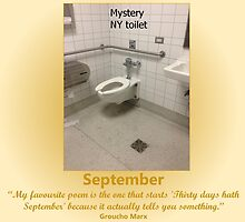 Toilets of New York 2015 September - Mystery by newbs