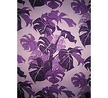Purple Monsteria Photographic Print