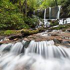 Jocassee Gorges Upcountry South Carolina Waterfall by MarkVanDyke