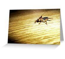 Jerusalem Cricket Greeting Card