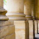 Columns - Art Gallery of South Australia by Elana Bailey