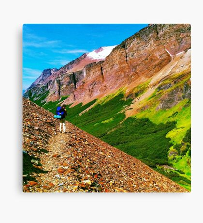 Our colourful world Canvas Print