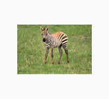Zebra Foal  Unisex T-Shirt