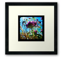 Roadside Framed Print
