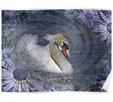 Canto de Cisne Poster