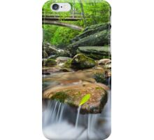 North Carolina Mountain Waters - Boone Fork & The Tanawha Trail iPhone Case/Skin