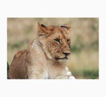 Lioness - Masai Mara - Kenya One Piece - Short Sleeve