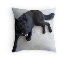 Lexis Dakota Throw Pillow