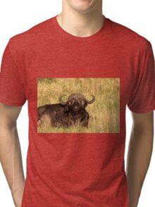 Water Buffalo Tri-blend T-Shirt