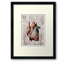 Heart 15 Framed Print