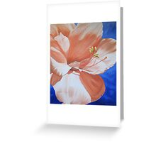 Amaryllis in the Sky Greeting Card