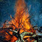 Burn baby burn by Jamie Lee
