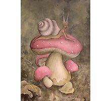 She-snail Photographic Print