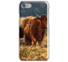 Highland cow and her calf iPhone Case/Skin