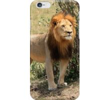 The Sentry  iPhone Case/Skin