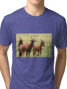 Topi Antelope Tri-blend T-Shirt