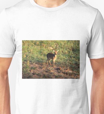 Masai Mara Dikdik Deer Unisex T-Shirt