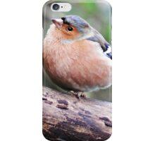 British Garden Birds iPhone Case/Skin