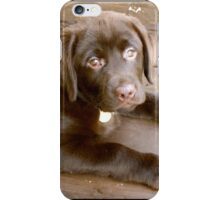 Puppy Face iPhone Case/Skin