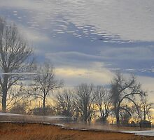 Reflection cased in Ice by Shilohlin Pfeiffer