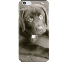 Puppy Face - B&W iPhone Case/Skin