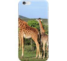 Giraffe Group On The Masai Mara iPhone Case/Skin