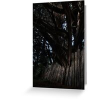 tree and fench Greeting Card