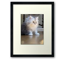 Paris Looking Out Framed Print