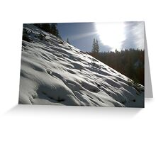 Snow Cover  Greeting Card