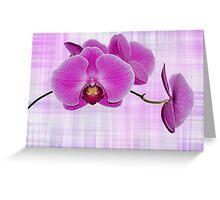 Petals On Plaid Greeting Card